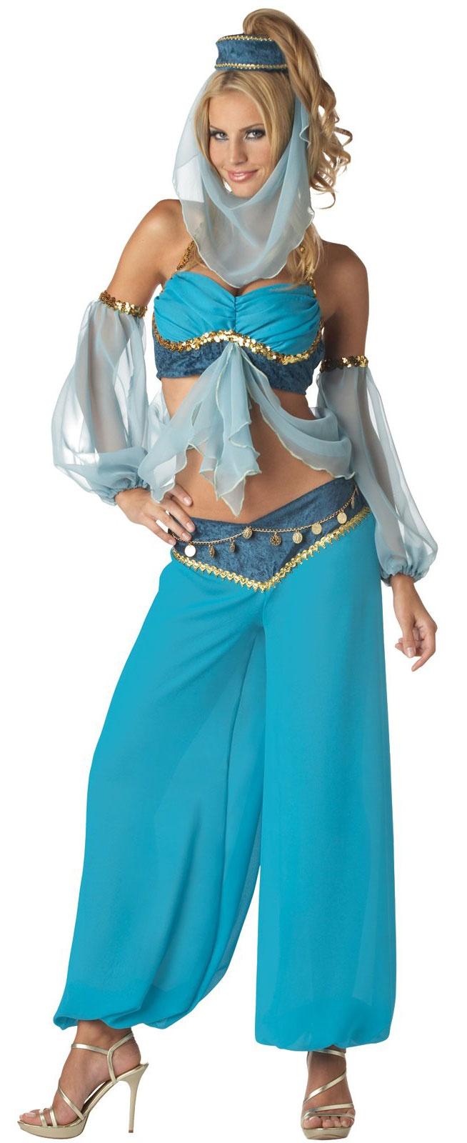 Harem's Jewel Adult Costume